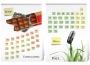 Календарь настенный видовой А3+ 7 листов